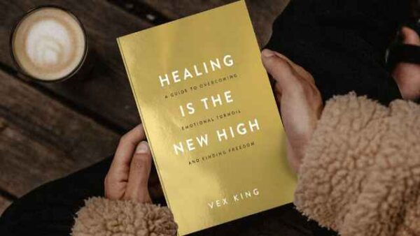 Healing-Is-The-New-High-Book-Pdf-Free-Download