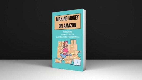 Florentina Bovian Making Money On Amazon How To Make Money Selling On Amazon Like The Professionals Download PDF